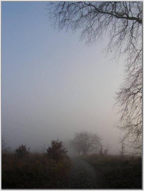 Jesienne poranki #wschód #wschody #niebo #krajobrazy #słońce #JesieńDrzewa #spacery #mgła #droga